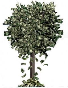 money_tree1-e1299966191360.jpg