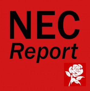 NEC Report