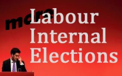 more Labour Internal Elections