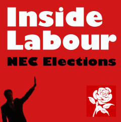 NEC elections