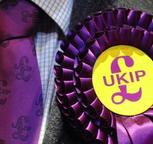 UKIP+Rosette